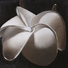 barbara zironi – flower, 12 x 16, oil on canvas