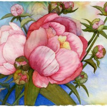 leonard brown, peonies, watercolor