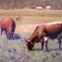 lou wandro, cow park 2, oil on wood panel