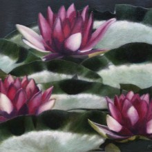 karen copsey, lotus field, oil painting