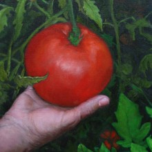 jenny purtle, old hand new tomato, oil painting