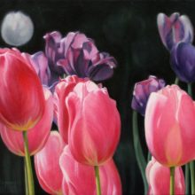 karen copsey, tulips, oil painting